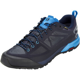 Salomon X Alp SPRY GTX Shoes Herr night sky/graphite/indigo bunting
